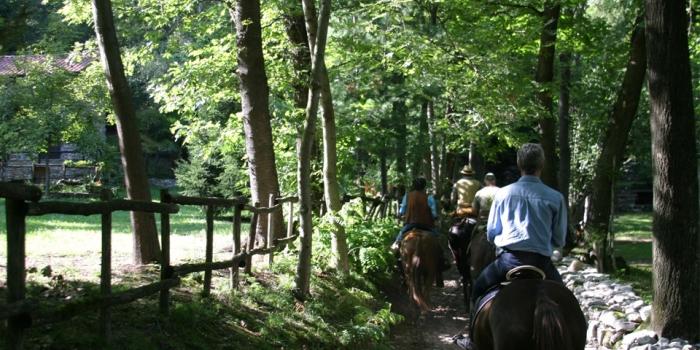 Equitazione – Riding –  Reiten